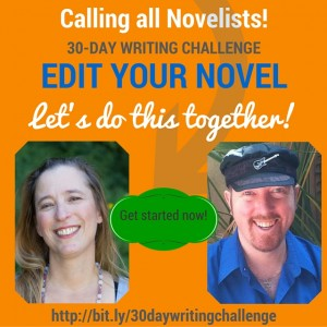 EDIT YOUR NOVEL-Beth Barany